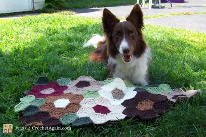 I have no idea how dog hair gets into my crochet!